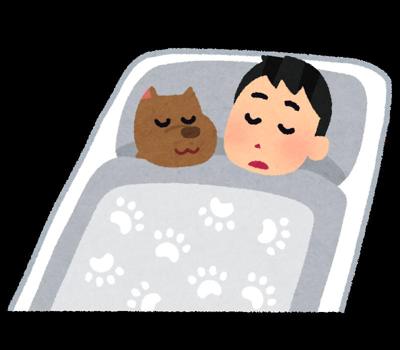 高い 寝起き は 体温